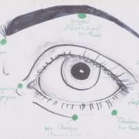 Entspannter Sehen und Hören – Qigong für alle Sinne